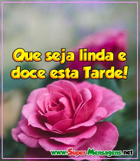 Mensagem de Boa Tarde com uma linda rosa
